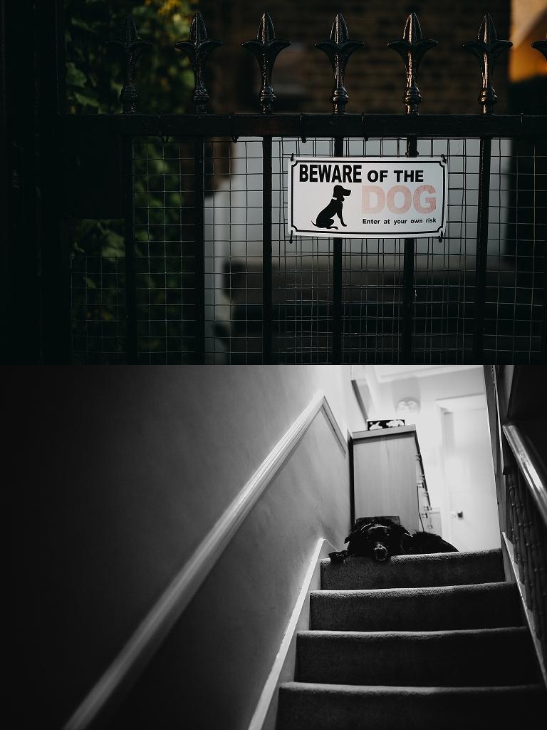Peter Hugo Photography street photographer